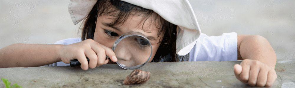 Zainteresowania dziecka w wieku szkolnym - dziewczynka z lupą z ciekawością wpatruje się w leżącą na ziemi muszlę